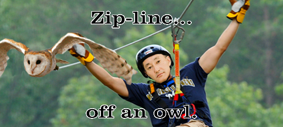 Zip line like a boss