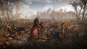thewitcher3screenshotjan29th1