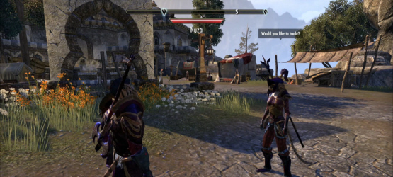The Elder Scrolls Online Issues: Bethesda Compares Launch to DDoS Attack