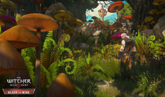 The Witcher 3 Blood and Wine Trailer Explores Toussaint