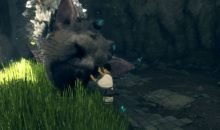 The Last Guardian Awards