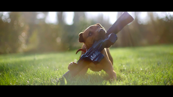 Live-Action Far Cry 5 Boomer the Dog Trailer Stars a Good Boy