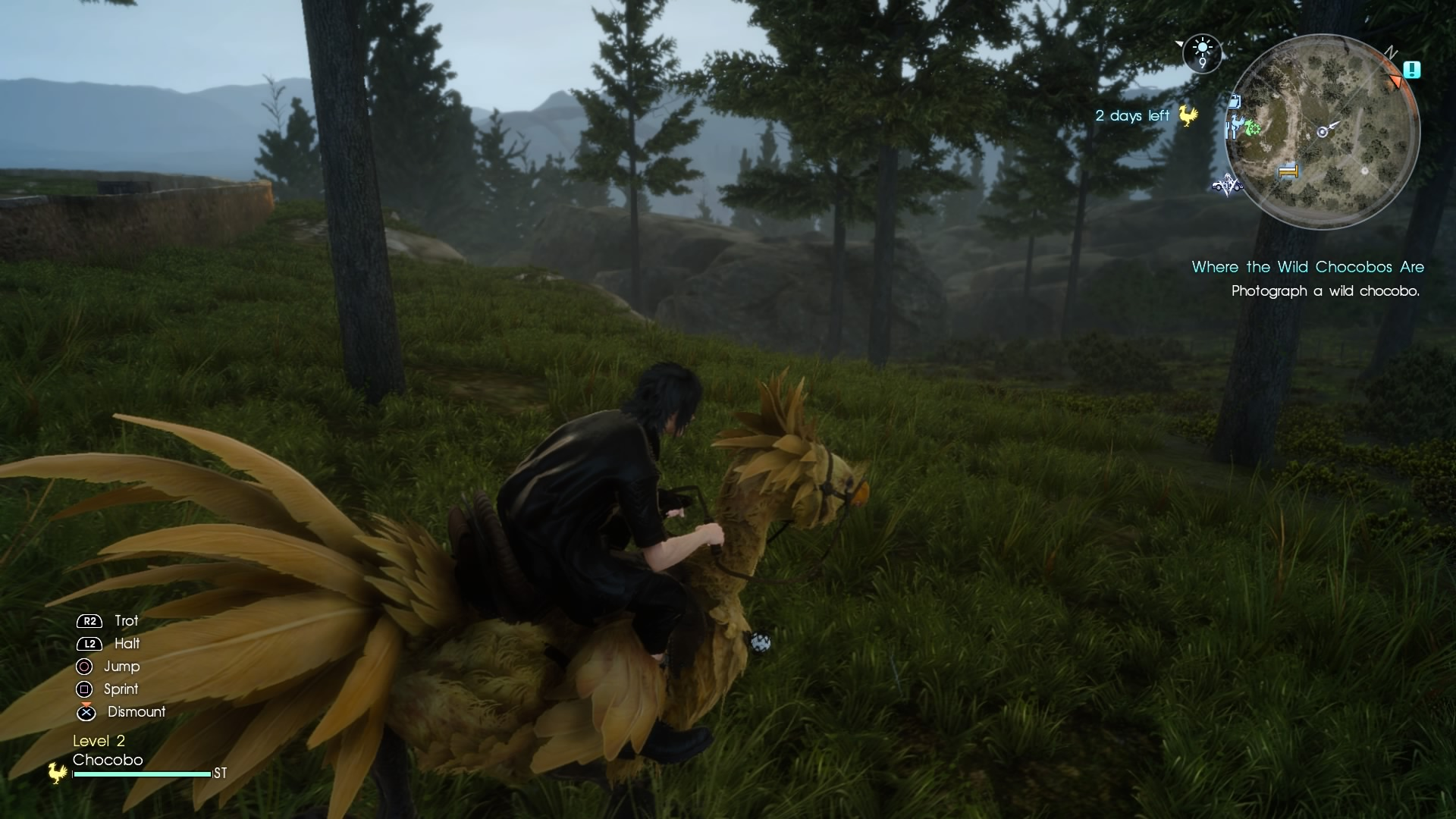 Final Fantasy XV Review - East Meets West (PS4)